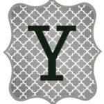Gray_Black Letter_Y