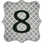 Gray_Black Number-8