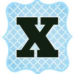 Blue_Black Letter_X