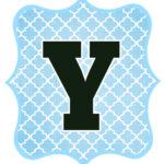 Blue_Black Letter_Y