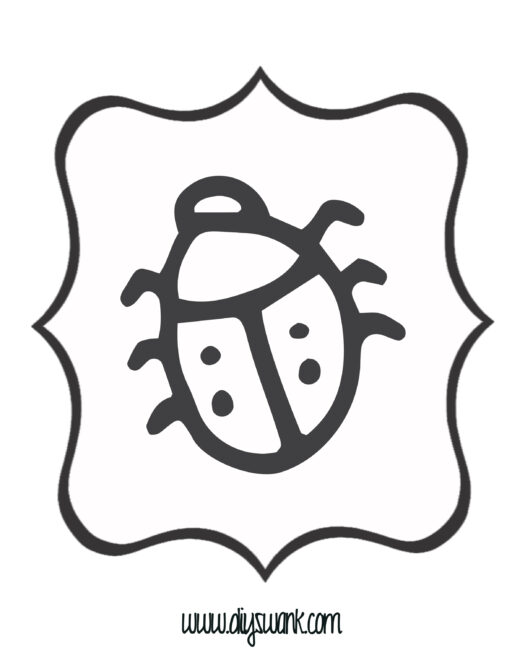 White and Black Lady Bug Banner
